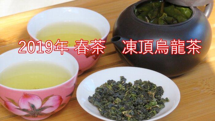 凍頂烏龍茶 2019年 春茶