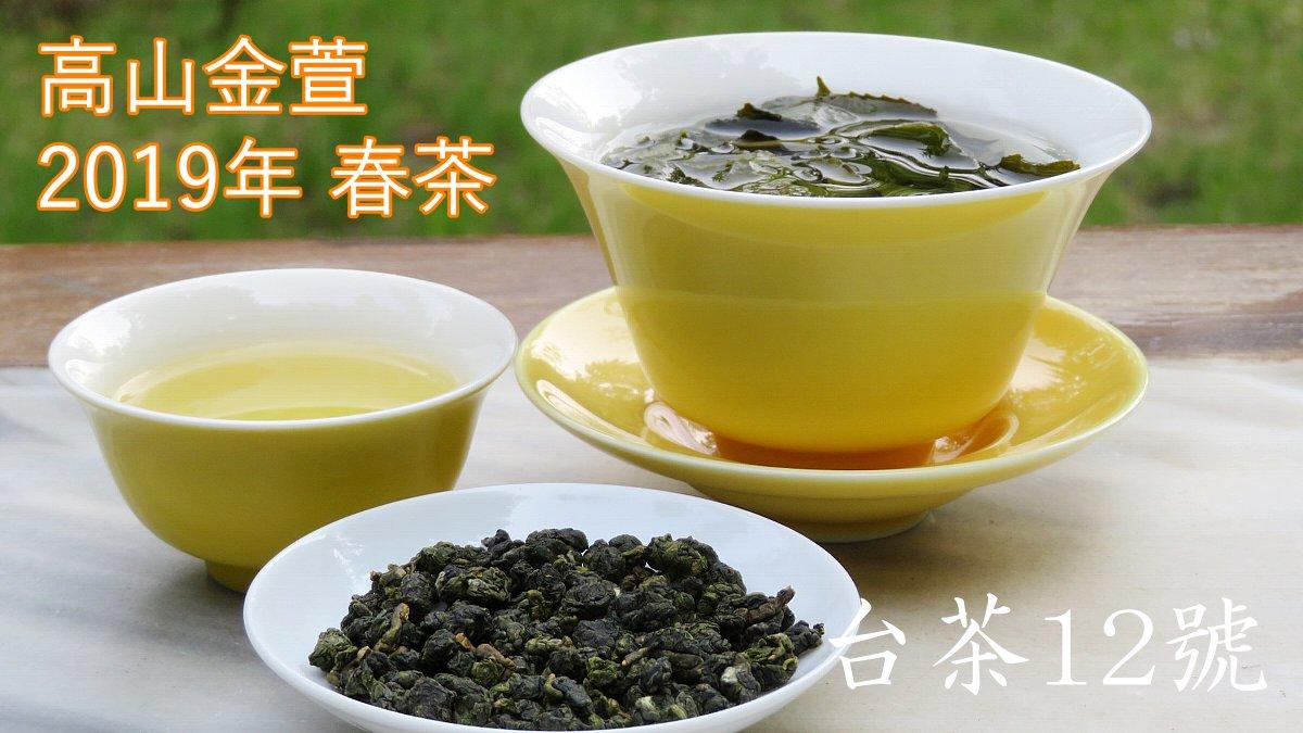 高山金萱 2019年 春茶