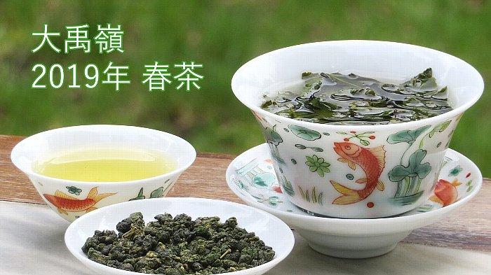 大禹嶺 2019年 春茶