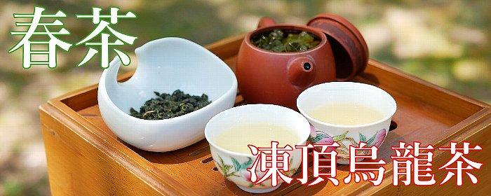凍頂烏龍茶 2020年 春茶