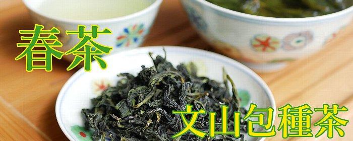 文山包種茶 2020 春茶