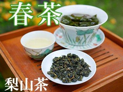 梨山茶 2020年 春茶