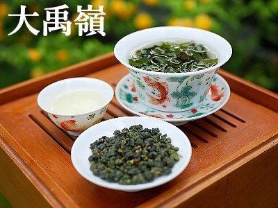 大禹嶺 2020年 春茶