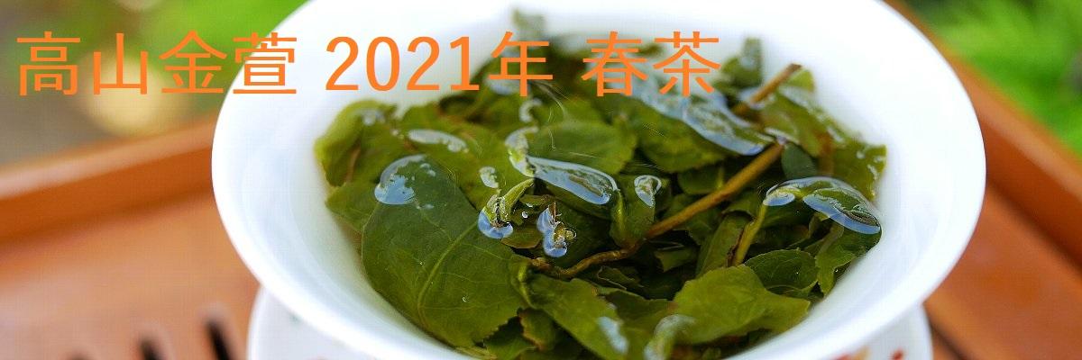 高山金萱 2021年 春茶