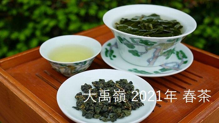 大禹嶺 2021年 春茶